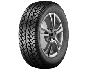 Gomme Nuove Chengshan 205 R16 110S CSC302 pneumatici nuovi Estivo